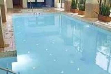 Hotel Embassy Suites By Hilton Dallas Love Field: Outdoor Swimmingpool DALLAS (TX)