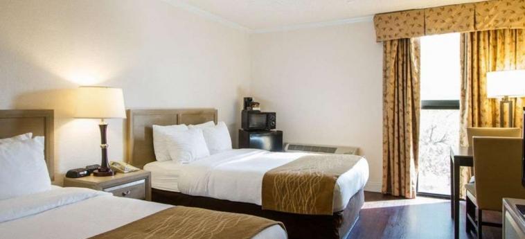 Hotel Comfort Inn Oceanside: Gästezimmer DEERFIELD BEACH (FL)