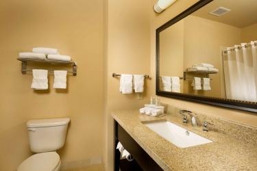 Hotel Holiday Inn Express & Suites Denton-Unt-Twu: Salle de Bains DENTON (TX)