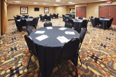 Hotel Holiday Inn Express & Suites Denton-Unt-Twu: Salle meeting DENTON (TX)