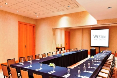 Hotel Westin Detroit Metropolitan Airport: Konferenzraum DETROIT (MI)