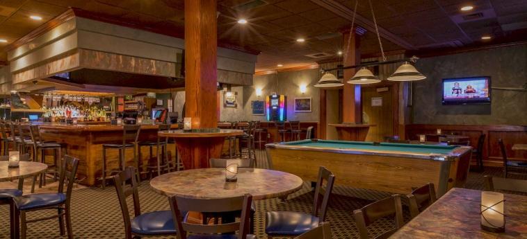 Hotel Holiday Inn Southgate (Detroit-South): Hotelbar DETROIT (MI)