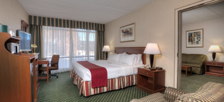 Hotel Holiday Inn Southgate (Detroit-South): Geburtstagsfeierbereich DETROIT (MI)