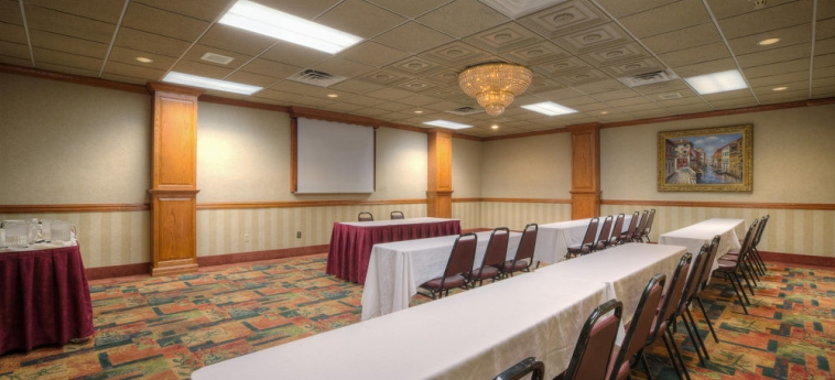 Hotel Holiday Inn Southgate (Detroit-South): Konferenzraum DETROIT (MI)