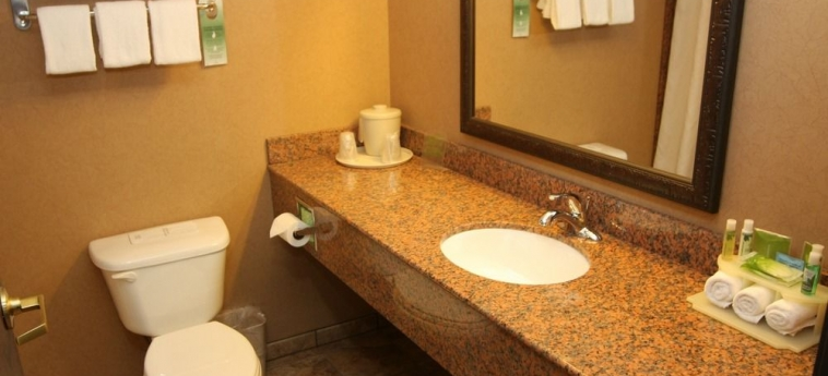 Hotel Holiday Inn Express & Suites: Salle de Bains DONEGAL (PA)