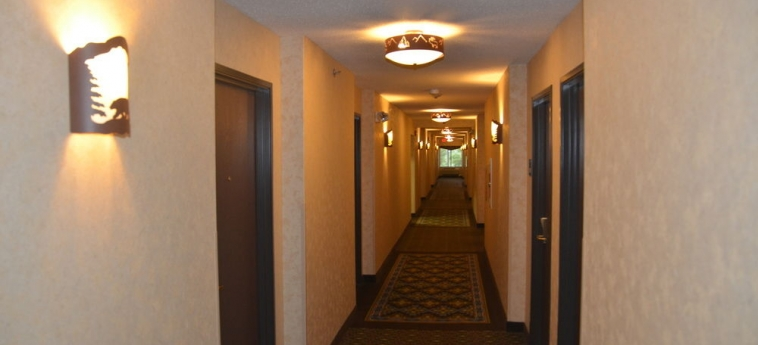 Hotel Holiday Inn Express & Suites: Hallway DONEGAL (PA)