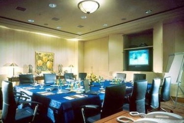 Hotel The Westin Bellevue: Sala Riunioni DRESDA
