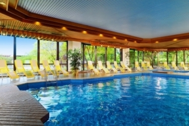 Hotel The Westin Bellevue: Piscina Cubierta DRESDE