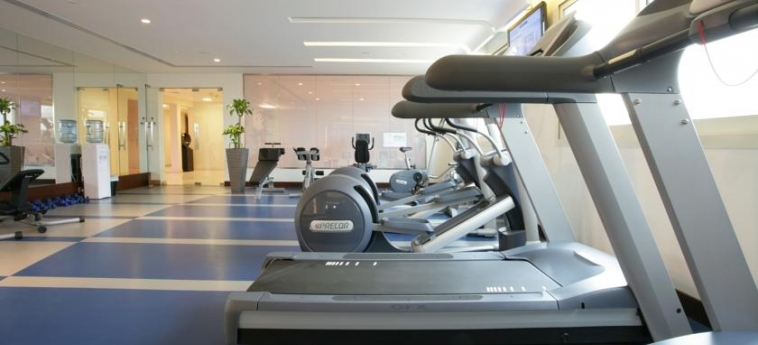 Hotel Elite Byblos: Fitnesscenter DUBAI