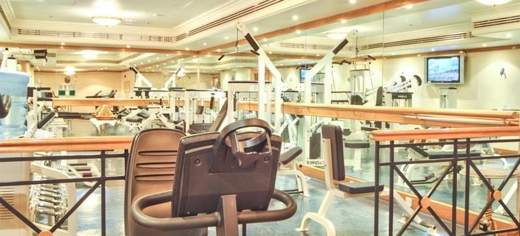 Excelsior Hotel Downtown: Palestra DUBAI