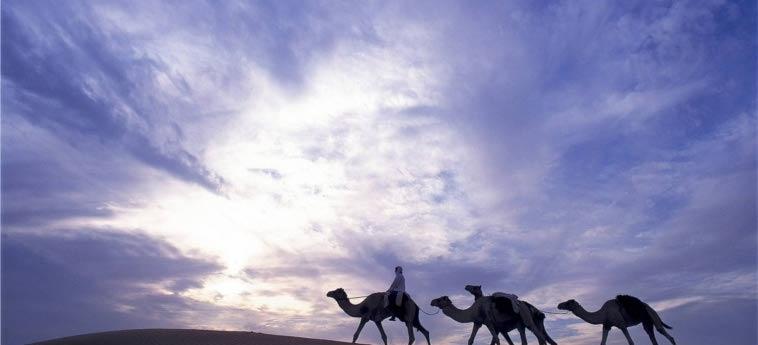 Hotel Al Maha, A Luxury Collection Desert Resort & Spa, Dubai: Detail DUBAI