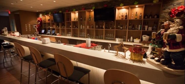 Edmonton Hotel & Convention Centre: Bar EDMONTON
