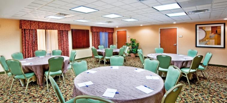 Hotel Holiday Inn Express Suites I-10 East: Struttura per riunioni EL PASO (TX)