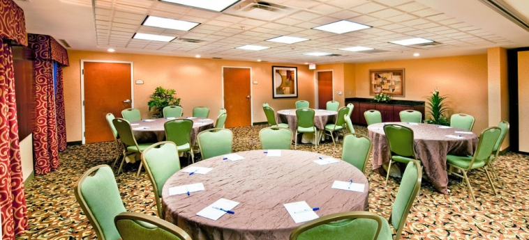 Hotel Holiday Inn Express Suites I-10 East: Meeting facility EL PASO (TX)
