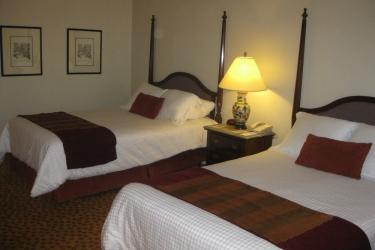 Hotel Camino Real El Paso: Vista de la habitación EL PASO (TX)