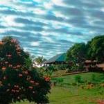 PALMLEA FARMS LODGE & BURES 3 Sterne