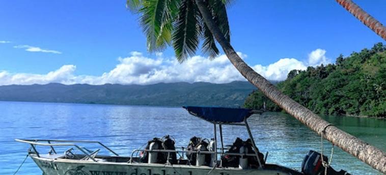 Dolphin Bay Divers Retreat: Plage FIJI ISLAND