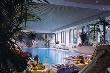 Hotel Crowne Plaza Frankfurt Congress: Piscine Découverte FRANCFORT