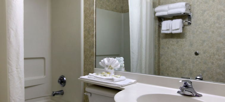 Hotel Microtel Inn & Suites By Wyndham Franklin: Bagno FRANKLIN (NC)