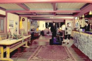 Hotel Highland Lodge: Recepción GEILO