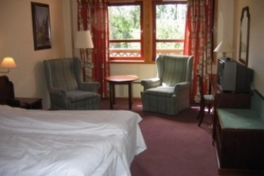 Thon Hotel Hallingdal: Camera Matrimoniale/Doppia GEILO