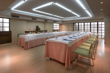 Hotel Macia Condor: Konferenzraum GRANADA