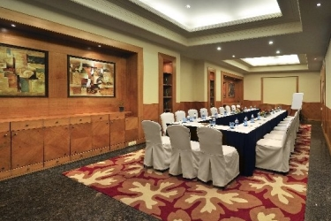 Hotel Park Plaza: Sala de conferencias GURGAON