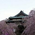 MIKAWAYA RYOKAN 3 Etoiles