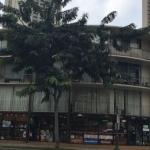 Hawaiian Ebbtide Hotel