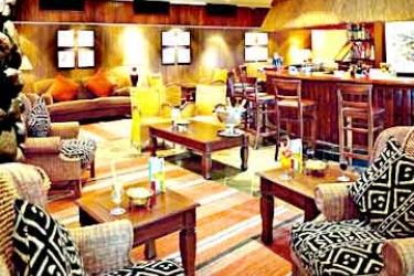Hotel Sabi River Sun: Bar HAZYVIEW