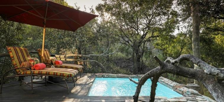 Hotel Camp Jabulani: Schwimmbad HOEDSPRUIT