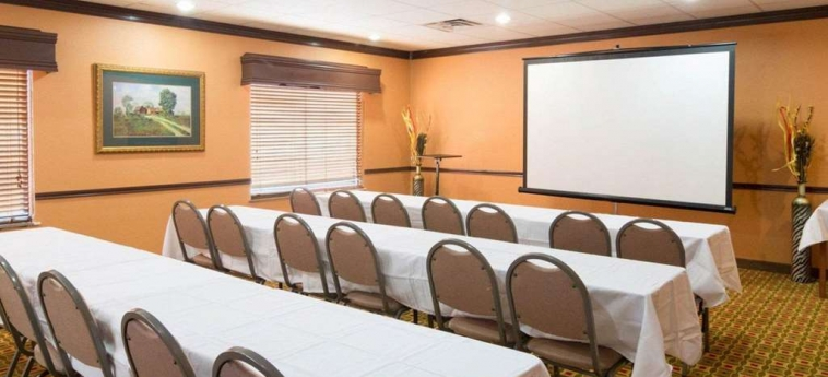 Hotel Quality Suites Bush - Iah Airport West: Salle de Réunion HOUSTON (TX)