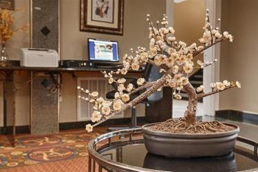 Hotel Best Western Heritage Inn: Lobby HOUSTON (TX)