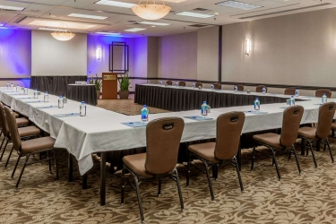Hotel Wyndham Houston West Energy Corridor: Sala Reuniones HOUSTON (TX)