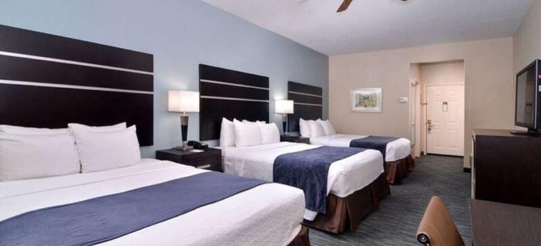 Hotel Best Western Northwest Inn & Suites: Chanbre HOUSTON (TX)