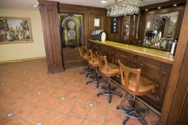 Hotel Golden Crown: Bar ISTANBUL