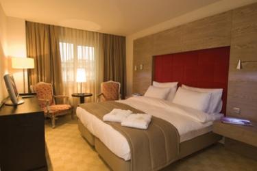 Agaoglu My City Hotel: Chambre ISTANBUL