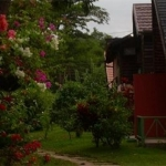 Hotel Secrets Cabins On Negril Beach