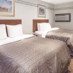 Hotel Knights Inn Kingston