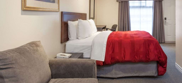 Hotel Knights Inn Kingston: Stanza degli ospiti KINGSTON - ONTARIO
