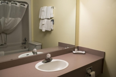 Hotel Thriftlodge Kingston: Bagno KINGSTON - ONTARIO