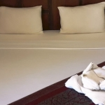 Hotel Paddy's Palms Resort