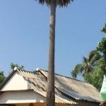 Hotel Klong Jark Bungalow