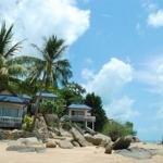 Hotel Phangan Orchid Resort