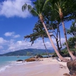 Hotel Lamai Bay View Resort