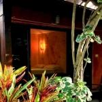 Hotel Cactus Bungalow