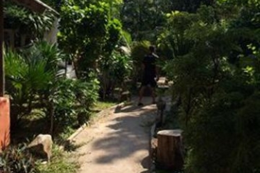 Hotel In Touch Resort: Pine Forest KOH TAO