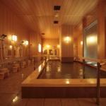 Hotel Matsui Hanakanzashi Ryokan