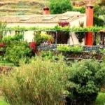 El Drago Rural House