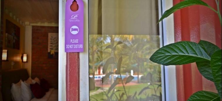 Hotel The Ocean Residence: Night Club LANGKAWI